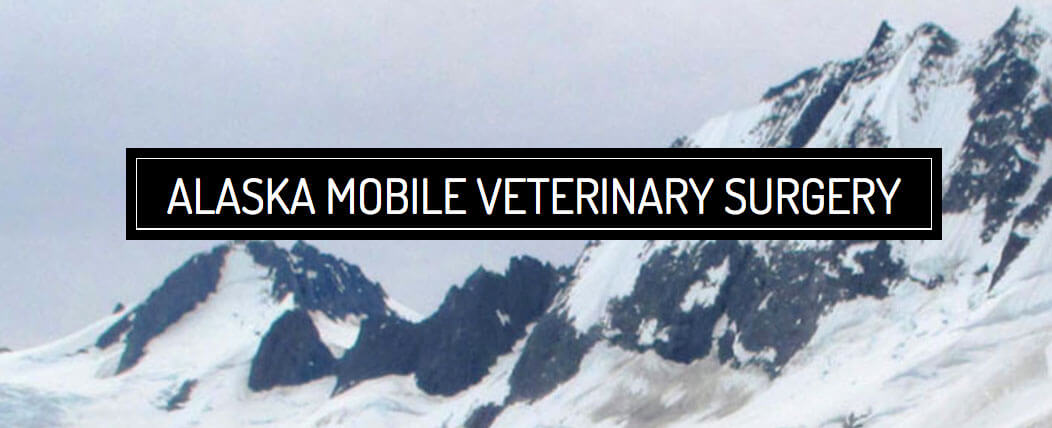 Alaska Mobile Veterinary Surgery